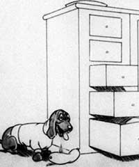 doggy-drawers